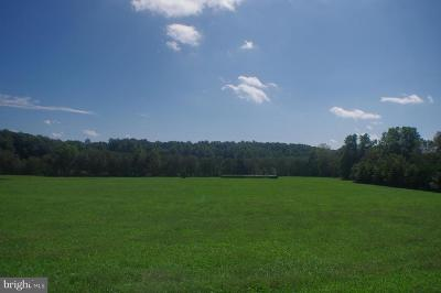 Orange County Residential Lots & Land For Sale: 27200 Sunnyside Road