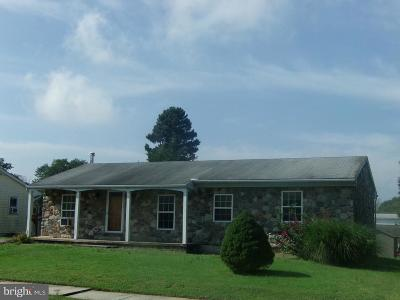 Sinking Spring Single Family Home For Sale: 226 Elwyn Avenue