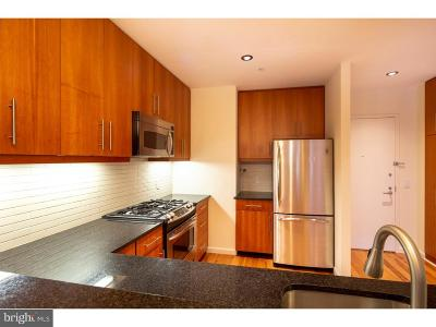 Rittenhouse Square Condo For Sale: 1425 Locust Street #7F