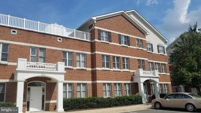 Gainesville, Haymarket Condo For Sale: 7200 Heritage Village Plaza #102 101
