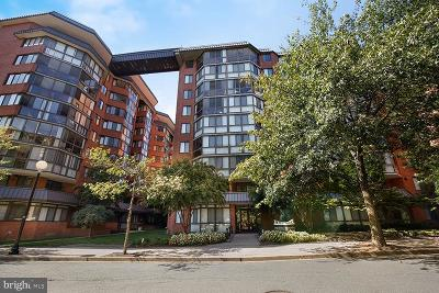 Arlington Condo For Sale: 1024 Utah Street #222