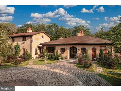 Bucks County Single Family Home For Sale: 465 Cafferty Road