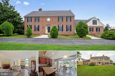 Reisterstown Single Family Home For Sale: 1900 Shawan Valley Lane