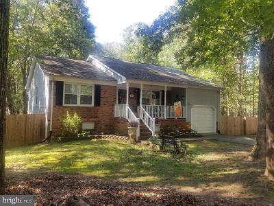 Spotsylvania County Single Family Home For Sale: 11800 Wilderness Park Drive