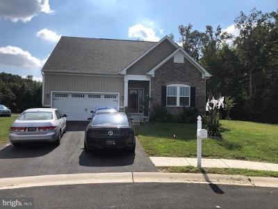 Millsboro Single Family Home For Sale: 433 Tunbridge Court