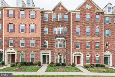 Ashburn Condo For Sale: 21706 Pattyjean Terrace