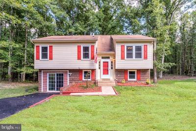 Spotsylvania Single Family Home For Sale: 5862 Partlow Road