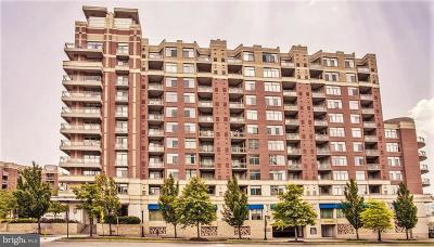 Arlington Condo For Sale: 3600 Glebe Road #415W
