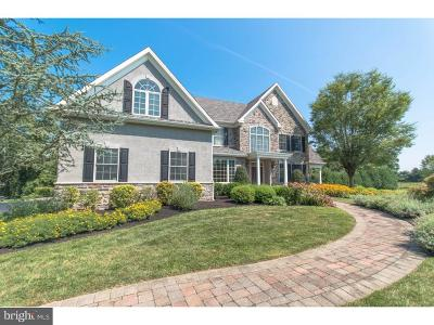 Bucks County Single Family Home For Sale: 113 Perry Lane
