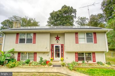 Greensboro Single Family Home For Sale: 202 Wheeler Drive