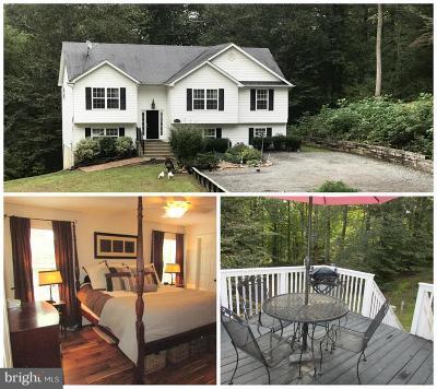 Mechanicsville Single Family Home For Sale: 27150 Knotts Lane