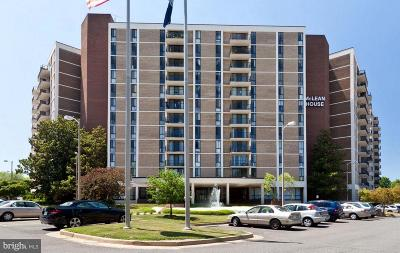 McLean Condo For Sale: 6800 Fleetwood