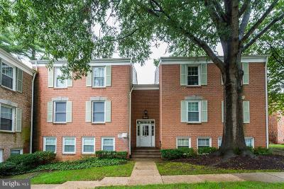 Gaithersburg Condo For Sale: 856 Quince Orchard Boulevard #202