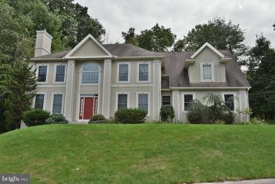 Hummelstown Single Family Home For Sale: 978 Appenzell Drive