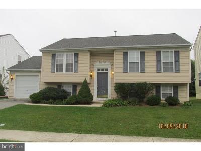 Chapel Run Single Family Home For Sale: 214 Suburban Drive