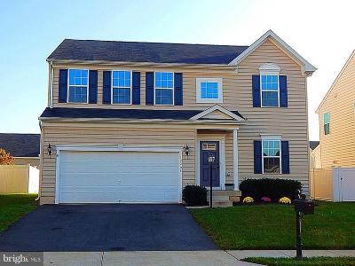Culpeper Single Family Home For Sale: 12208 Salt Cedar Lane