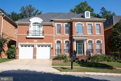 Potomac Single Family Home For Sale: 11411 Patriot Lane