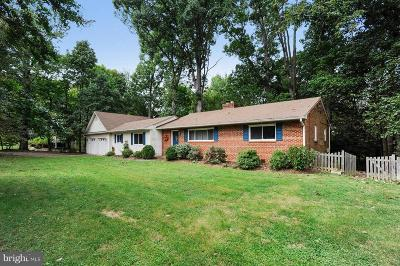 Falls Church Single Family Home For Sale: 2318 Chestnut Hill Avenue