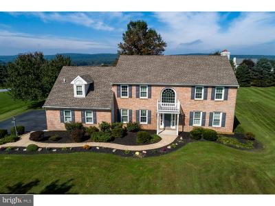 Honey Brook Single Family Home Under Contract: 209 Vincent Drive