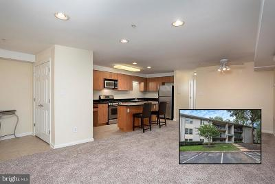 Annapolis Condo For Sale: 1117 Primrose Court #104