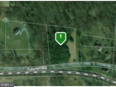 Residential Lots & Land For Sale: 911 Laurel Road