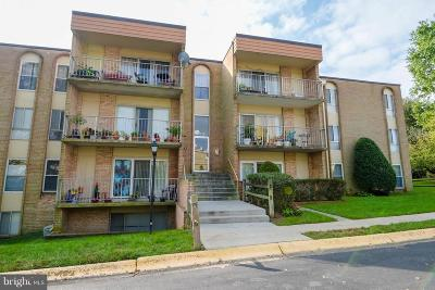 Rockville Condo For Sale: 11915 Parklawn Drive #202