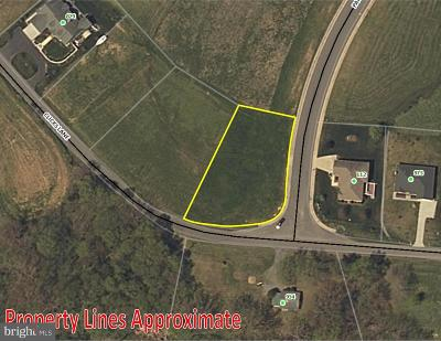 Residential Lots & Land For Sale: 919 Clicks Lane