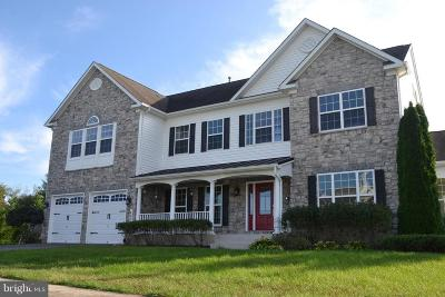 Greencastle Single Family Home For Sale: 491 Scarlet Circle