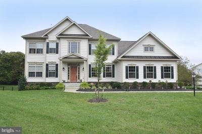 Loudoun County Single Family Home For Sale: 103 Lamplighter Court