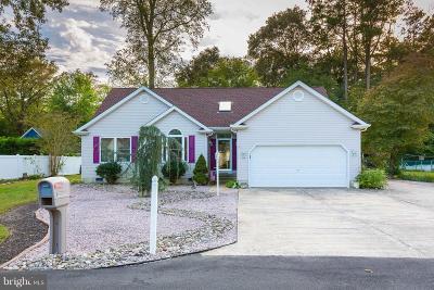 Single Family Home For Sale: 94 Comanche Circle