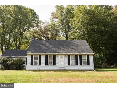 Doylestown Single Family Home For Sale: 4816 Kings Road