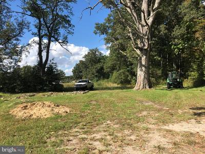 Caroline County Residential Lots & Land For Sale: 26350 Marydel Road