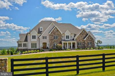 Leesburg Single Family Home For Sale: 15470 Montresor Road