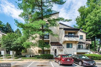 Gaithersburg Condo For Sale: 9711 Hellingly Place #55