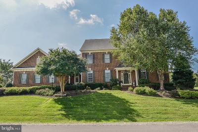 Leesburg Single Family Home For Sale: 41727 Putters Green Court