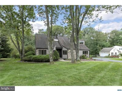 Newark Single Family Home Under Contract: 1005 White Birch Drive