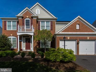 Bristow, Haymarket, Gainesville, Nokesville, Bealeton, Manassas Rental For Rent: 10888 Mayfield Trace Place