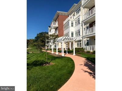 West Chester Condo For Sale: 246 Gilpin Drive #246