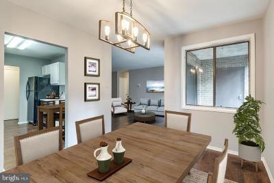 Reston, Herndon Condo For Sale: 521 Florida Avenue #2