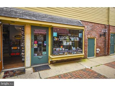 Bucks County Commercial For Sale: 46 E State Street #K