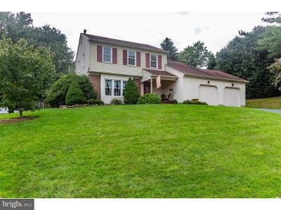 Hockessin Single Family Home For Sale: 1 Stone Barn Drive