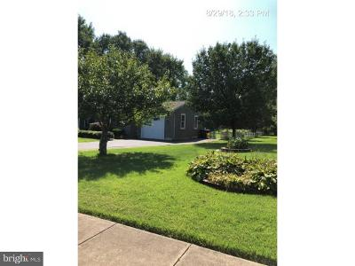 Hammonton Single Family Home For Sale: 307 Cedar Street