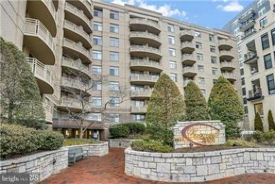 Bethesda Rental For Rent: 7111 Woodmont Avenue #216