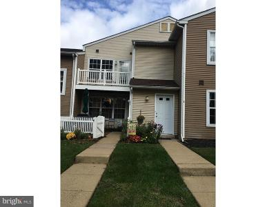 Doylestown Condo For Sale: 302 Ferris Lane #C2
