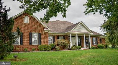 Culpeper County Single Family Home For Sale: 19507 Clair Manor Drive
