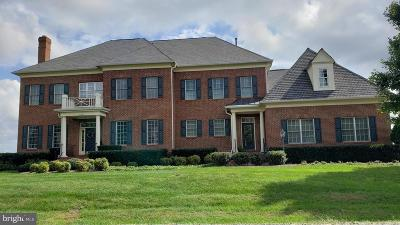 Leesburg Single Family Home For Sale: 41386 Raspberry Drive