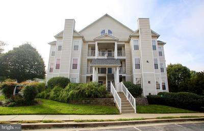 Gaithersburg Condo For Sale: 9814 Feathertree Terrace #25