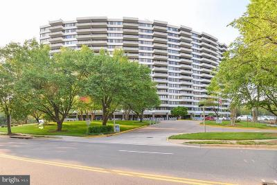 Alexandria Condo For Sale: 6301 Stevenson Avenue #711