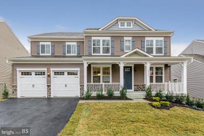 Single Family Home For Sale: Lilliflora Drive
