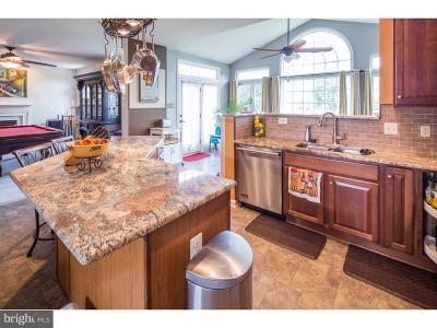 Bear Single Family Home For Sale: 8 Butterfly Lane